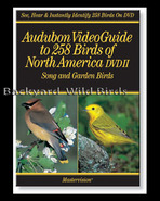 Bird Watching DVD/CD