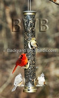 Tube Bird feeders