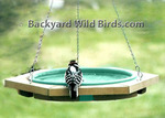 Wood Frame Hanging Bird Bath