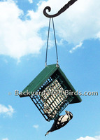 Suet Recycled Bird Feeder