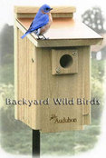Copper Top Bluebird Birdhouse