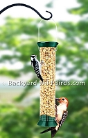 Woodpecker Peanut Bird Feeder