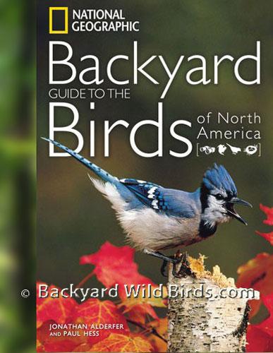 Charmant Backyard Wild Birds
