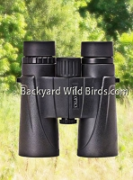 Bird Watcher 10x42 Binocular Vortex