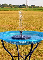 Bird Bath Solar Bubbler