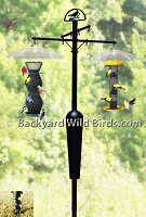 Bird Feeder Pole System A2