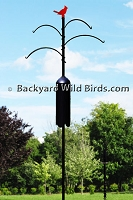 Cardinal Bird Feeder Pole