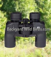 Backyard Wild Birds - Bird Feeder Poles with Bird Feeders