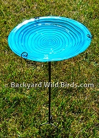 Blue Swirl Bird Bath
