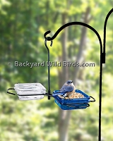 Bluebird Feeder Double Tray