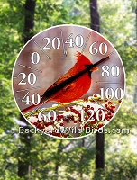 Cardinal Easy Read Thermometer