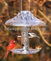 Cardinal Bird Feeder With Tray