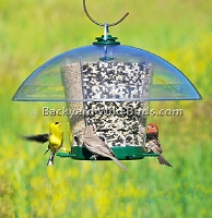 Carousel Bird Feeder