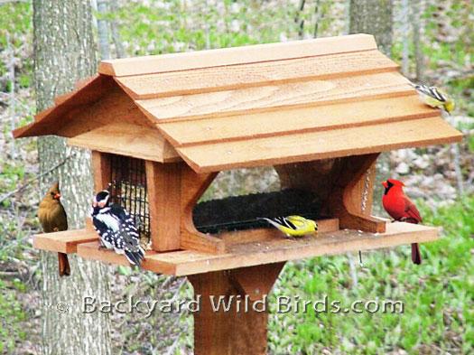 is balcony seeds roof bird s outdoor wild iron hanging net itm red image mushroom loading feeder