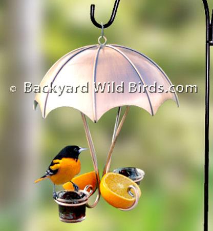 Copper Oriole Bird Feeder