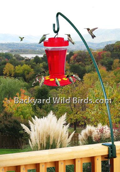 p classic audubon feeder bird oz humming woodlink thumb hummingbird