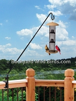 Extended Pole Sunflower Bird Feeder