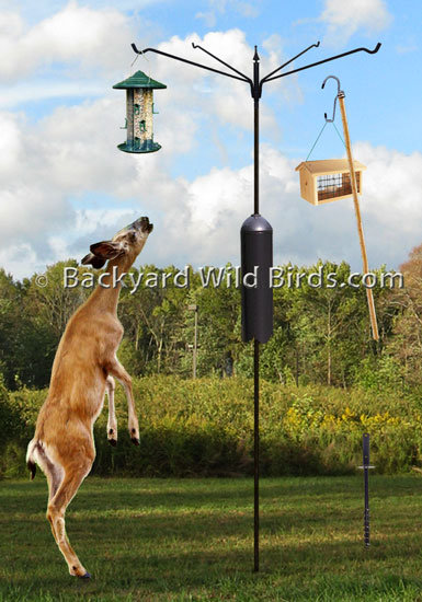 This Fits Your Make Sure By Entering Model Number Premium Design Rust Proof Strong Steel Bird Feeder Pole Stands 7 Feet And 8