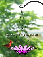 Hanging Daisy Bird Bath