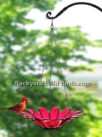 Hanging Red Glass Bird Bath