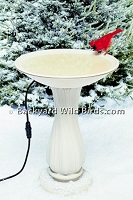 Heated Bird Bath Bowl With Pedestal