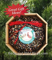 Holiday Bird Seed Wreath