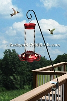 Hummingbird Feeder With Deck Pole