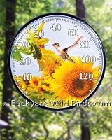 Hummingbird Sunflower Wall Thermometer