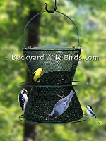 Large Sunflower Bird Feeder