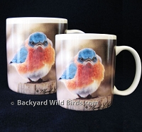 Mad Bluebird Coffee Mug Pair