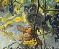 Owl Perched in Grapes Puzzle