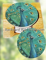 Peacock Coaster Set