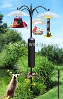 Raccoon Proof Bird Feeder Pole System