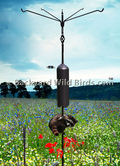 Raccoon Proof Bird Pole Quad