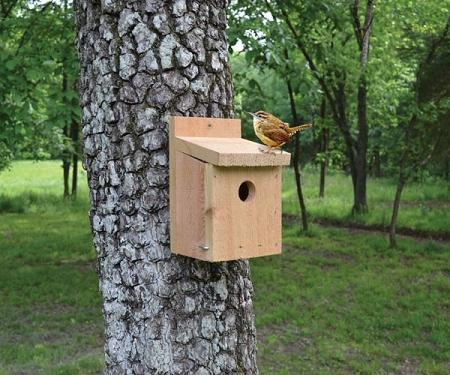 Cedar Wren Birdhouse on cardinal bird house designs, different bird house designs, cute bird house designs, wooden bird house designs, homemade bird house designs, easy bird house designs,