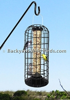 Squirrel Blocker Peanut Bird Feeder