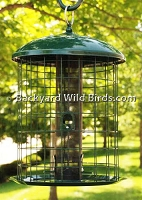 Squirrel Proof Metal Tube Bird Feeder