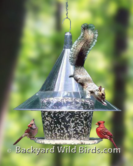 centre grande or aspects feeders high glass feeder plastic backyard collections view mini hummingbird and hanging bird