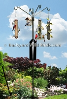Bird Feeder S Pole Squirrel Proof System