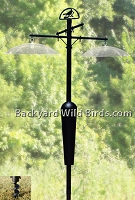 Squirrel Stopper Bird Feeder Pole
