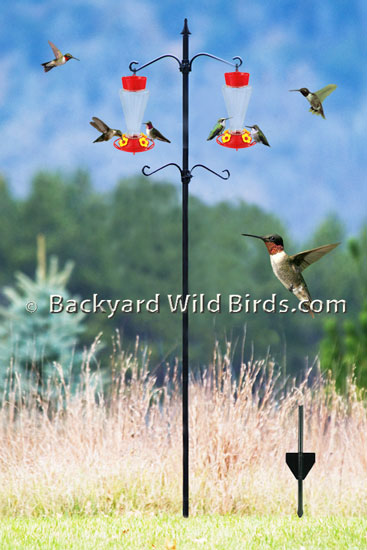 Hummingbird Feeder Pole Mount ...