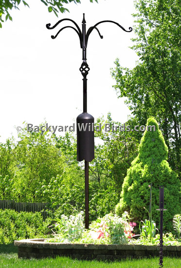 Squirrel Proof Bird Pole Quad