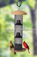 Sunflower Seed Bird Feeder