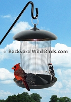 Sunflower Wire Mesh Bird Feeder