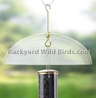 Super Squirrel Bird Feeder Baffle