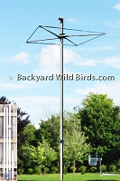 Tall Bird Pole Rack System