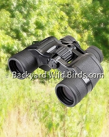 Bird Watcher Binocular