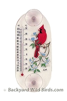 Cardinal Window Thermometer