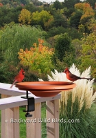 Deck Clamp Bird Bath