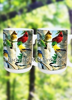 Songbird Coffee Mugs